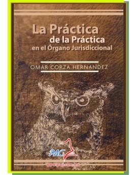 LA PRÁCTICA DE LA PRÁCTICA EN EL ORGANO JURISDICCIONAL